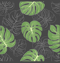 seamless pattern with tropical monstera leaves on vector image