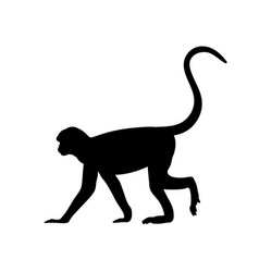 Silhouette monkey animal genus primates vector