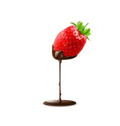 Sweet strawberries vector