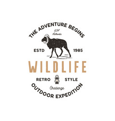 adventure logo design camping adventures badge vector image