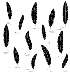 Black writting feathers on white vector