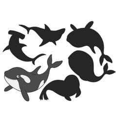 Cartoon killer whale vector