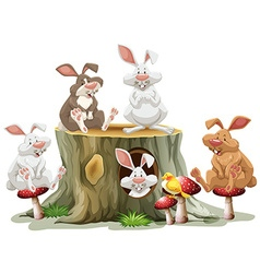 Five rabbits sitting on log vector image
