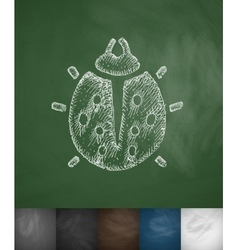 Ladybug icon Hand drawn vector