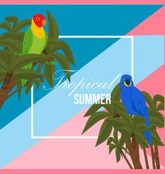 parrot summer beach banner vector image