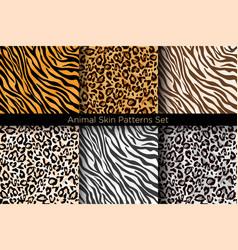 Set animal seamless prints vector