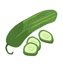 cucumber with slice flat design cucumber isolated vector image