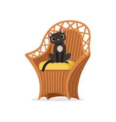 Lovely black cat sitting on a wicker chair vector