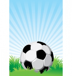 Soccer on the field vector