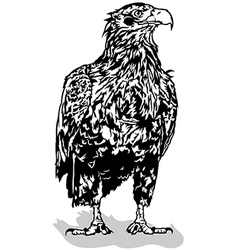 Standing eagle vector