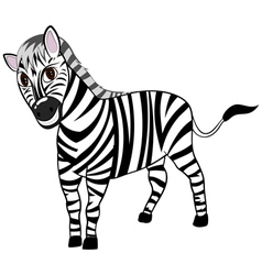 Funny Cartoon Zebra vector image vector image