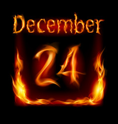 twenty-fourth december in calendar of fire icon vector image