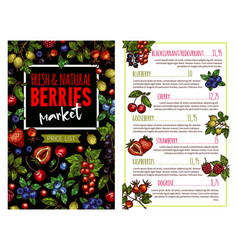 Berry and fruit banner for price list template vector