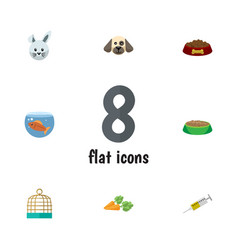 Flat icon pets set of bird prison vaccine rabbit vector