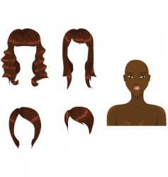 hair brown vector image