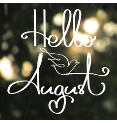 Handmade calligraphy and text Hello August vector