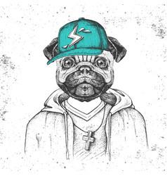 Hipster animal pug-dog dressed in cap like rapper vector