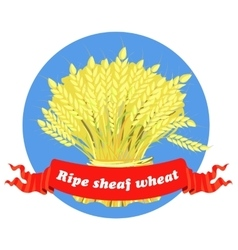 Agriculture grain Sheaf of Wheat vector