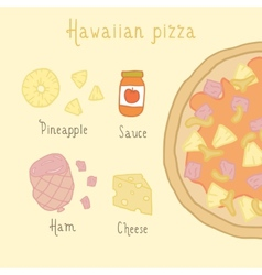 Hawaiian pizza ingredients vector image