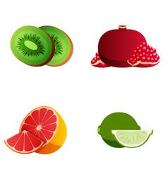 kiwi pomegranate grapefruit lime appetizing vector image