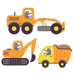 mole and working transport vector image