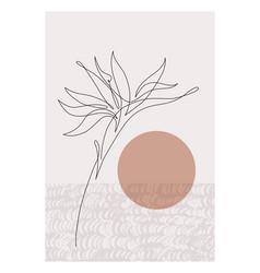 One line art bird-of-paradise flower elegant vector
