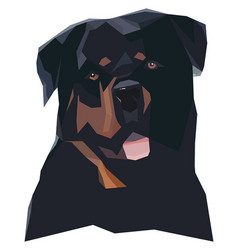 Rottweilers portrait in a geometric style vector