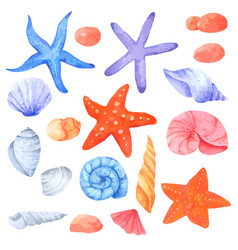 Shellfish and starfish watercolor collection vector
