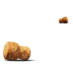 Two champagne cork lie on diagonal white vector
