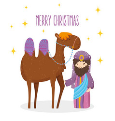 wise king and camel manger nativity merry vector image