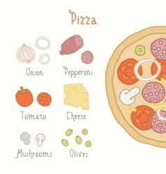 Regular pizza ingredients vector image vector image