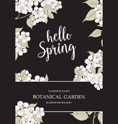 spring time concept vector image vector image