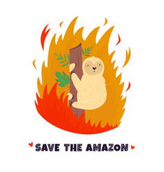 Amazonian forest in fire sloth in flame vector