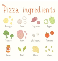 Hand drawn ingredients vector image