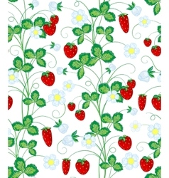 Hand drawn seamless strawberry pattern vector