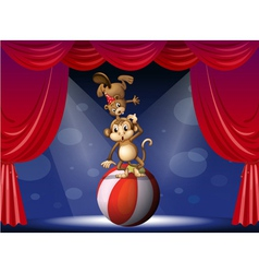 A beaver and a monkey perfoming on the stage vector image vector image