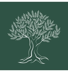 Olive tree outline silhouette icon vector image vector image