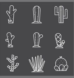 Cactus icon set collection exotic plants vector