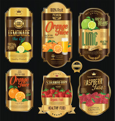 Retro vintage golden labels for organic fruit vector
