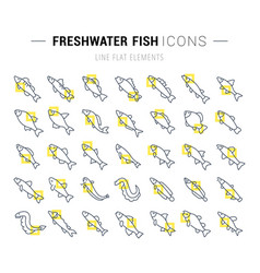 set line icons freshwater fish vector image