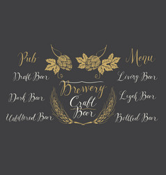 Set of design elements and inscriptions for beer vector