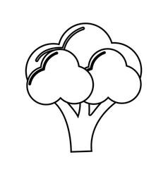 Silhouette healthy broccoli vegetable icon vector