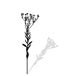 Silhouette of Plants Ilustration vector