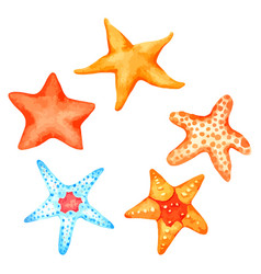 Starfish watercolour set isolated on white vector