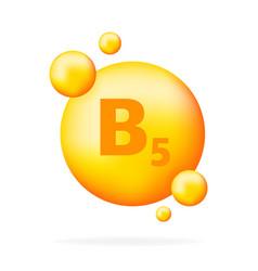 Vitamin b5 vitamin drop pill capsule icon vector