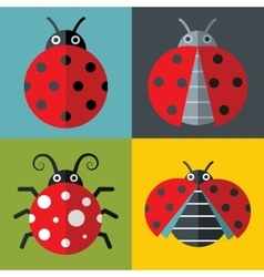Ladybug icons in flat style on color background vector image