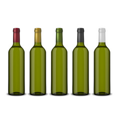 set 5 realistic green bottles of wine vector image