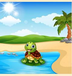 Cartoon turtle on beach vector