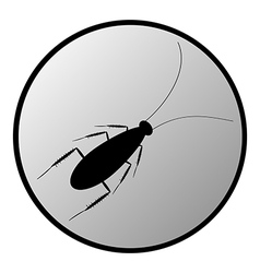 Cockroach button vector image