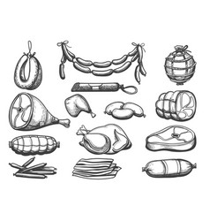 hand drawn meat food set vector image